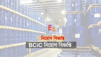 BCIC Job