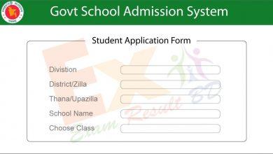 School Admission Application Form